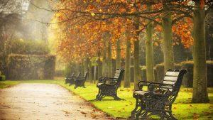 Enjoy scenic autumn walks in London Parks